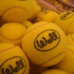 足立区、八潮市、三郷市からも通えるテニススクール