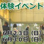 レッスン無料体験イベント開催